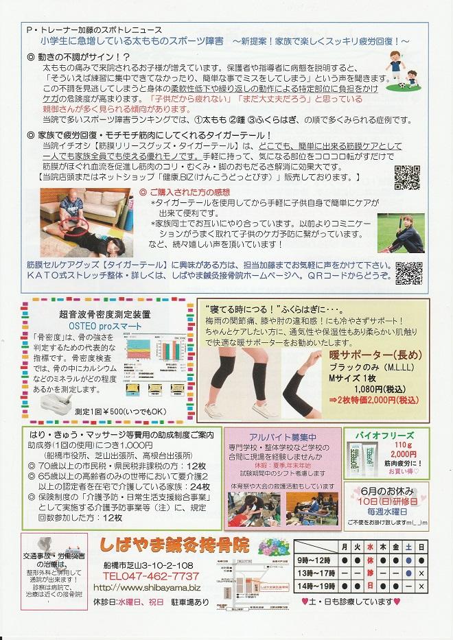 shibayama6-2